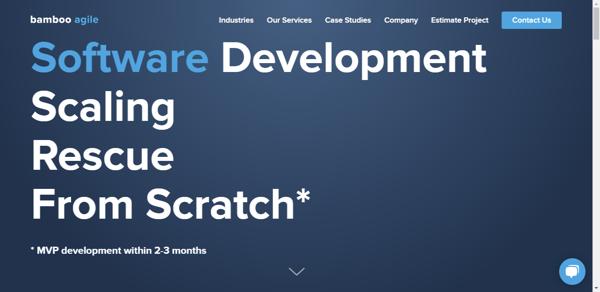 Bamboo-Agile-Software-Development-Company
