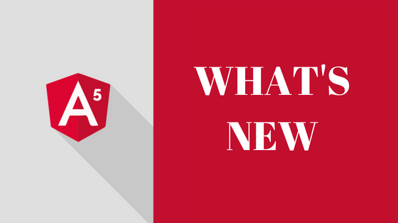 What's new- Angular 5