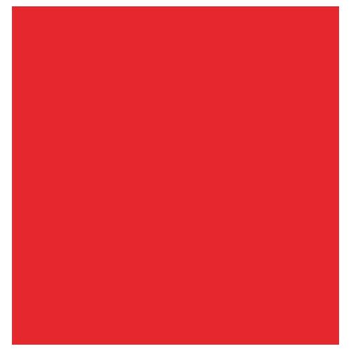 Quick-Development-Icon magento ecommerce development Classic Informatics