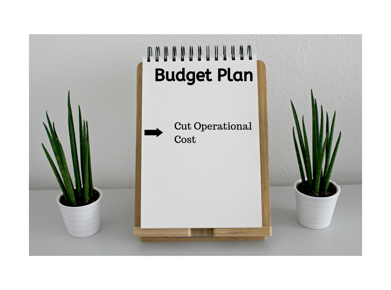 outsourcing saves cost budget plan